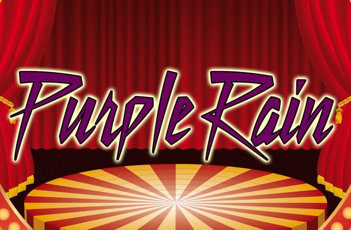Purple Rain Elderberry Berliner Weisse